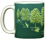 Trees of North America Ceramic Mug - Front