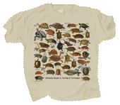 Ultimate Turtles & Tortoises Adult T-shirt