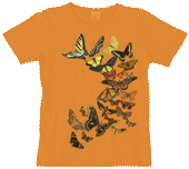 Butterfly Sunset Ladies Scoop-Neck T