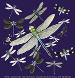 Dragonfly Flight Adult T-shirt