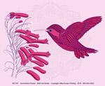 Hummingbird Flower Ladies Scoop-Neck Tee