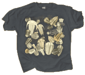 Trilobite Fossils Adult T-shirt test8