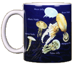 Jellyfish Glow Ceramic Mug