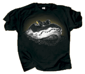 Eye of the Gator Adult T-shirt