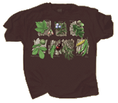 Tree Sampler Adult T-shirt