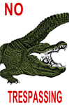 "No Trespassing Gator 2"" X 3"" Magnet"