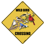 Wild Bird Crossing - Front