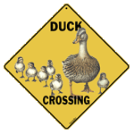 Duck Crossing - Front