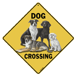 Dog Crossing - Front