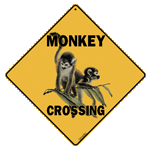 Monkey Crossing - Front