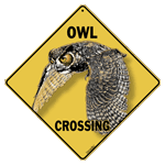Owl Crossing test8