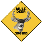 Mule Deer Crossing