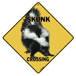Skunk Crossing - Front