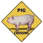 Pig Crossing Sign