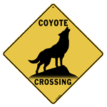 Coyote Silhouette Crossing