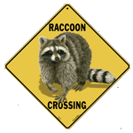 Raccoon Crossing Sign