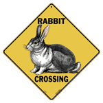 Rabbit Crossing test8