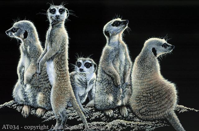 """Meerkats 2"""" X 3"""" Magnet"""