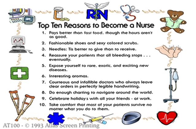 """Top Ten Nurse 2"""" X 3"""" Magnet"""