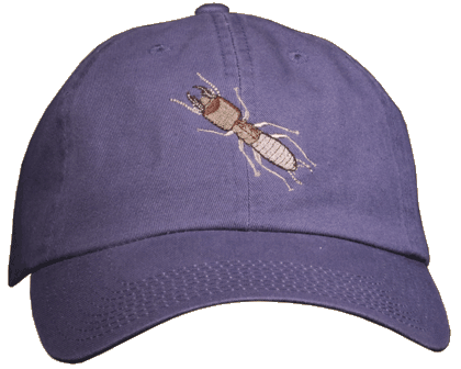 Isoptera - Termite Embroidered Cap