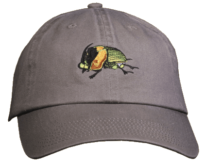Dung Beetle Embroidered Cap