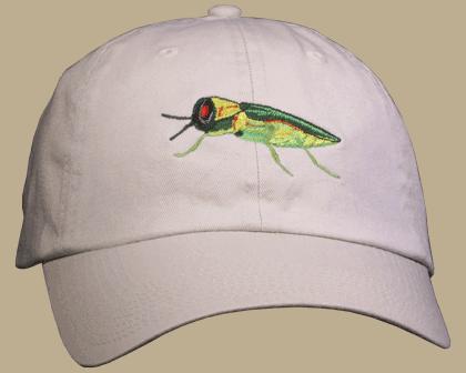 Emerald Ash Borer Embroidered Cap