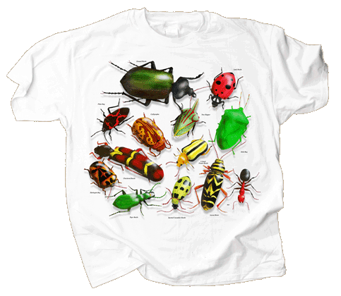 Vintage Insects Adult T-shirt
