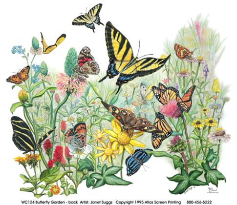 Butterfly Garden II Matted Print