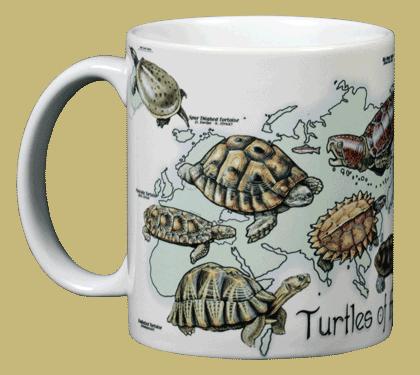 Turtles of the World Ceramic Mug - Front