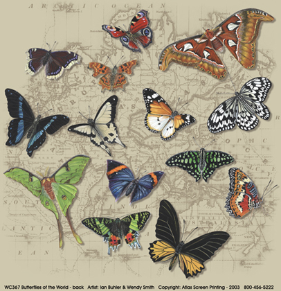 Butterflies of World