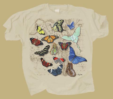 Butterflies of World  - Front