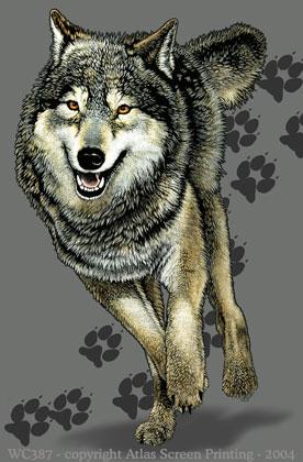 "Wolf Trax 2"" X 3"" Magnet"