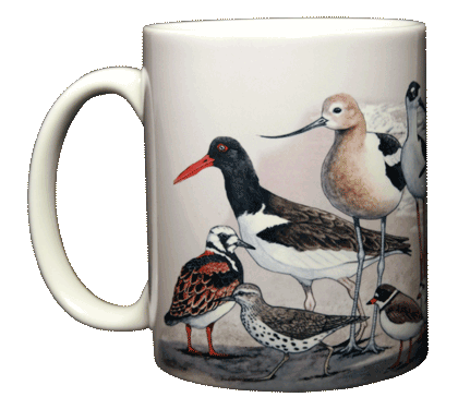 Shorebirds Ceramic Mug - Front