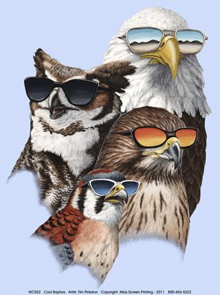 Cool Raptors Youth T-shirt