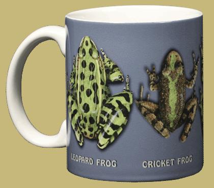 Frog Circle Ceramic Mug - Front