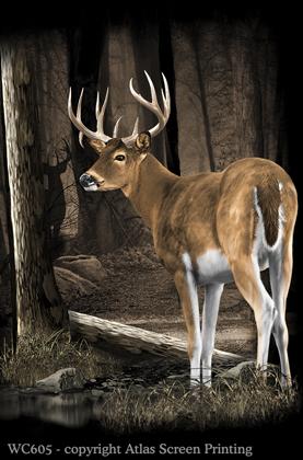 """Whitetail Deer 2"""" X 3"""" Magnet"""