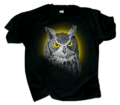 Discharge Owl 2/C Adult T-shirt