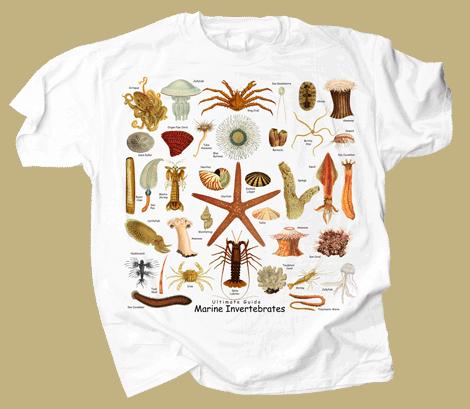 Ultimate Marine Invertebrates Adult T-shirt