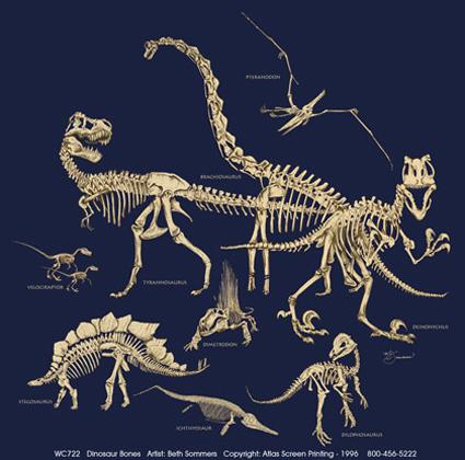 Dinosaur Bones Adult T-shirt