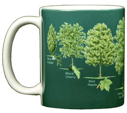 Trees of North America Ceramic Mug - Front