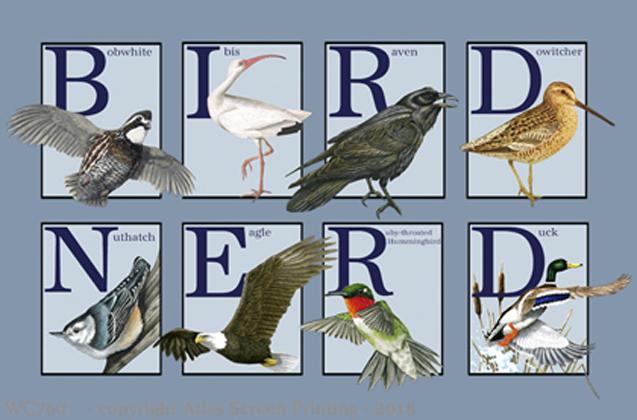 "Bird Nerd 2"" X 3"" Magnet"