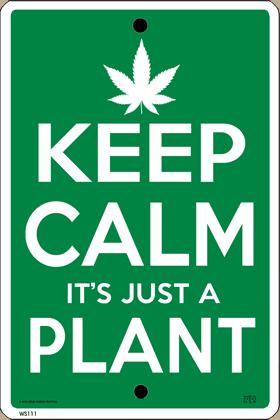 Keep Calm (Pot) Plant