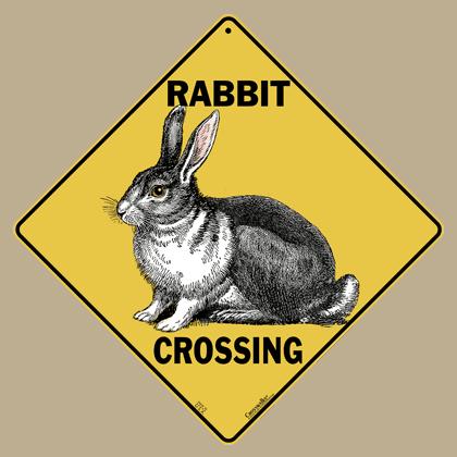 Rabbit Crossing
