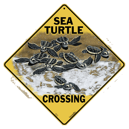 Sea Turtle Crossing Sign