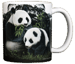 Giant Pandas Ceramic Mug - Back