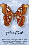 "Atlas Moth 2"" X 3"" Magnet"