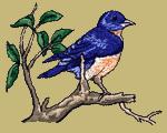 Bluebird Embroidered Cap