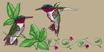 Hummingbirds Embroidered Cap