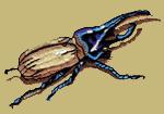 Hercules Beetle Embroidered Cap
