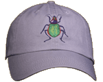 Carabid Beetle Embroidered Cap